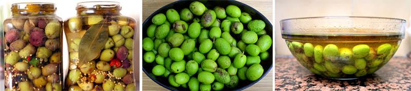 olive-montage