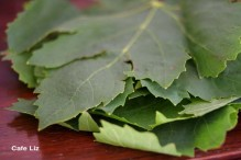 fresh-grape-leaves
