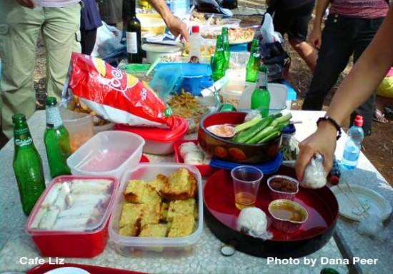 Japanese-picnic